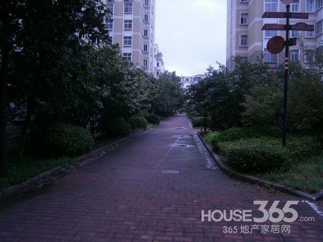 实拍 太阳岛花园 正规三室 采光好 高档小区 总价低 环境优美