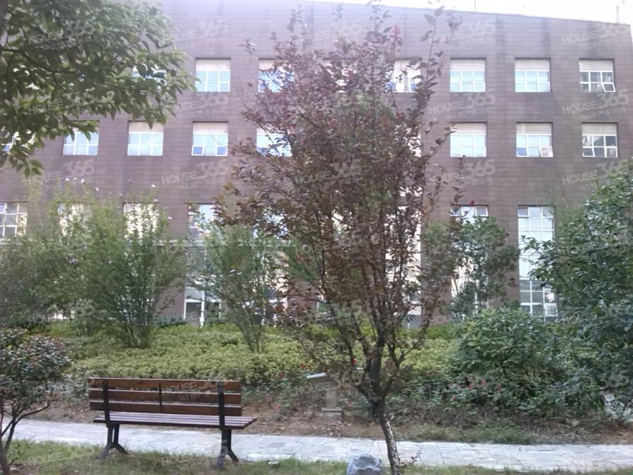 政务区 八中旁 湖畔春天 三房两厅 精装 出售