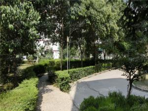 新科花园,西安新科花园二手房租房