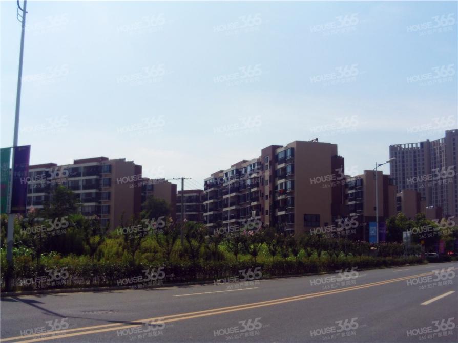 (迎茂 适合才好)经开大学城 不限购 70年住宅 地铁紫云路站