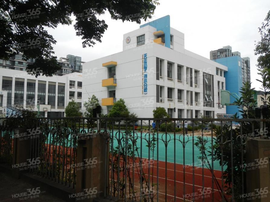 天正滨江3室2厅3卫187平米毛坯产权房2012年建