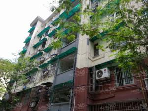 大塘新村,杭州大塘新村二手房租房