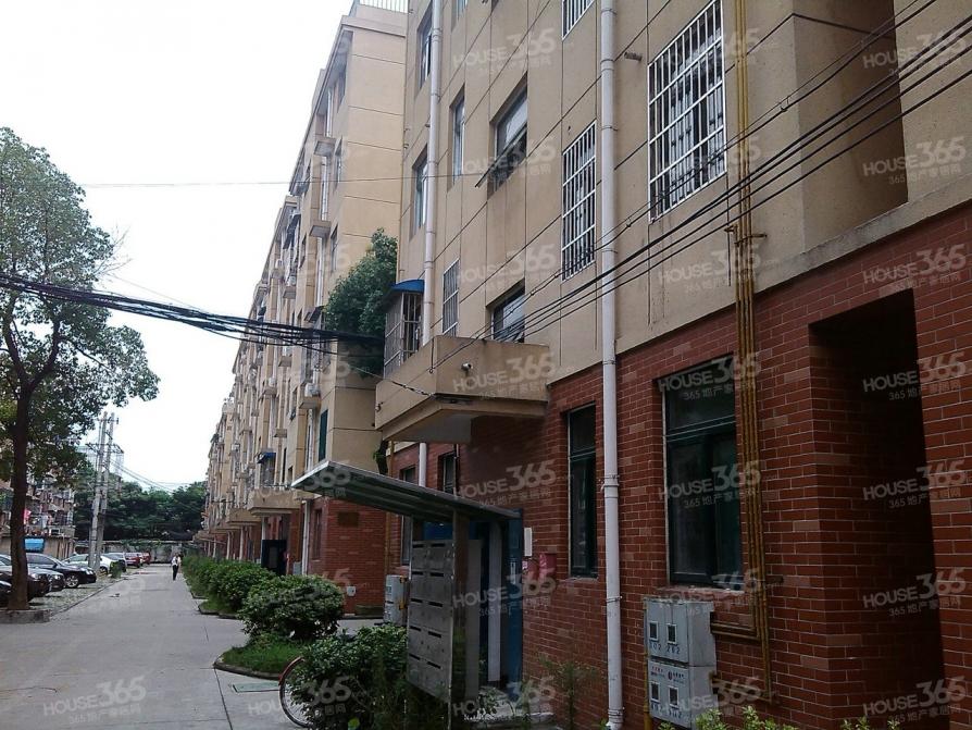 叉车厂宿舍 户型好 位置好 小区环境好 无税 看房随时方便