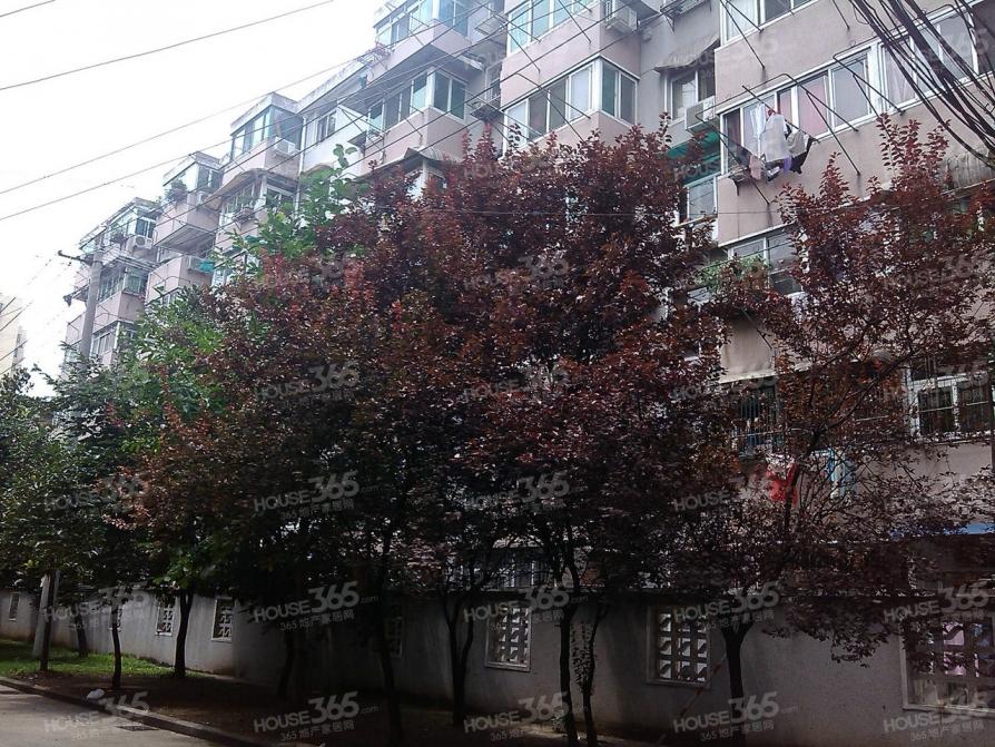 蜀山南七里站叉车厂宿舍 3室0厅1卫 57.02平米