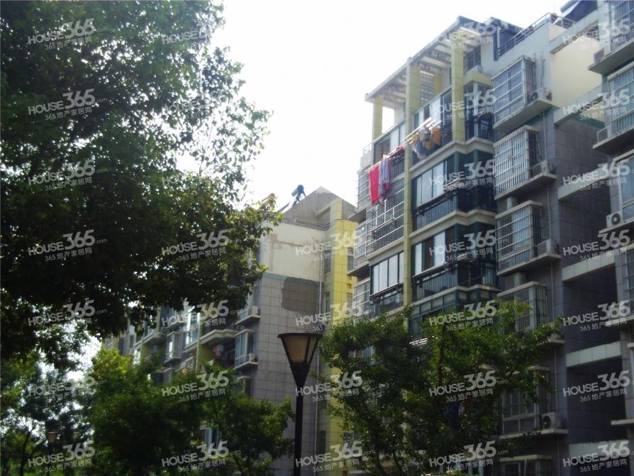 芙蓉公寓经典南北通透无税三房好户型诚心出售 随时看房 超高