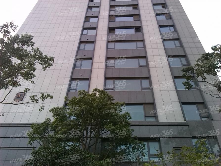 政务区,栢悦公馆,毛坯,黄金楼层,采光好,稀缺急售