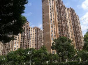 长江国际二期泓园,无锡长江国际二期泓园二手房租房