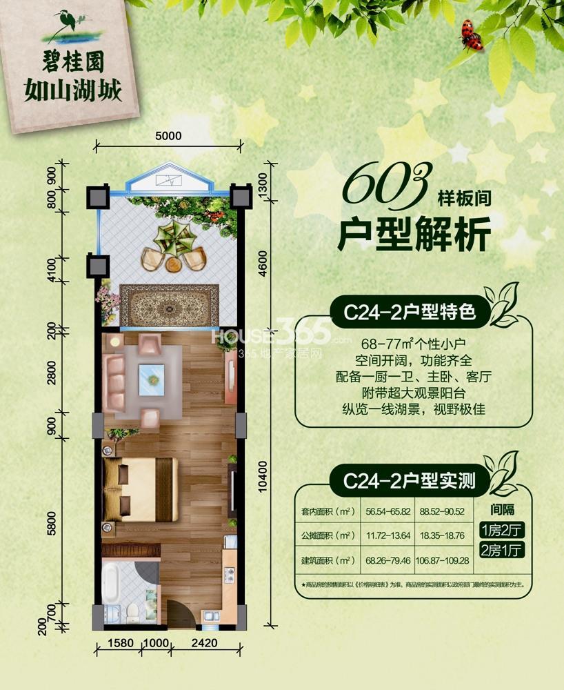 碧桂园如山湖城68-109㎡C24-2户型图(605样板间)